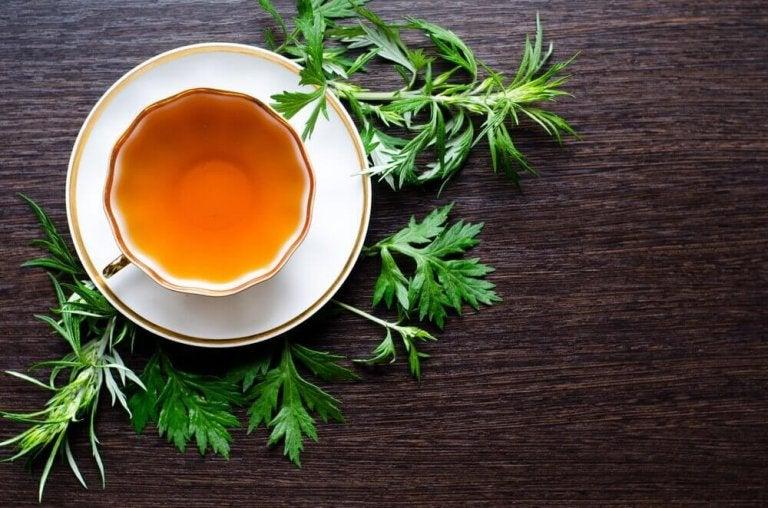 Piołun - liście i herbata.