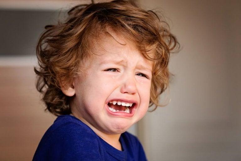 Pasożyty jelita u dziecka - co powinieneś zrobić?