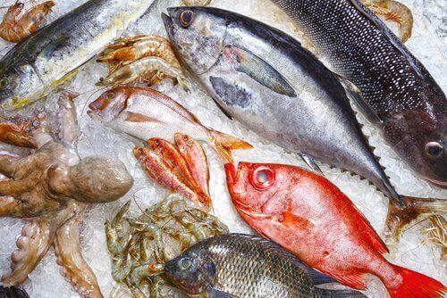 Ryby w lodzie.