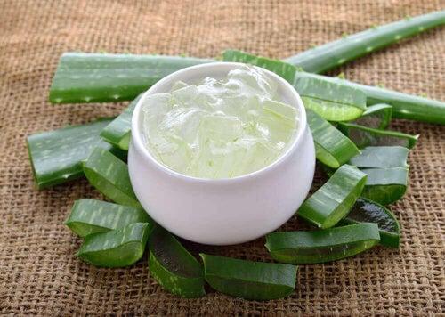 Bezcenne właściwości aloesu pomogą również w leczeniu łysienia.