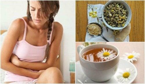 Zespół jelita drażliwego – wylecz herbatą imbirowo-rumiankową