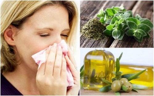 Układ oddechowy – ochroń go za pomocą oregano i oliwy z oliwek