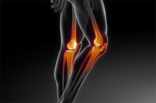 Kości nóg - rentgen