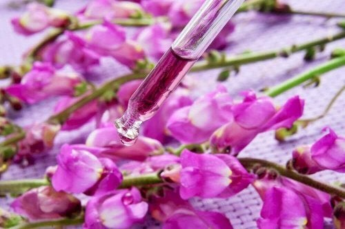 suplementy diety pomocne w rzucaniu palenia- kwiaty Bacha