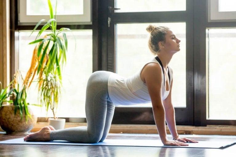 Asany łagodzące ból pleców – sposób na zdrowie!