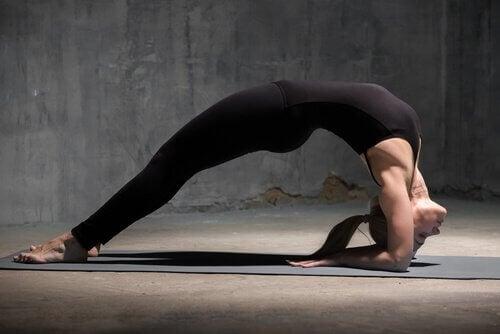Asany dodające energii – joga obudzi cię o poranku!