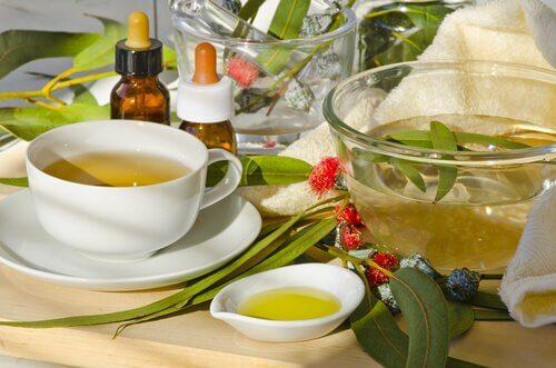 Naturalne leczenie żylaków - zioła