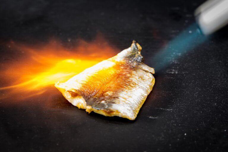przepis na rybę au gratin