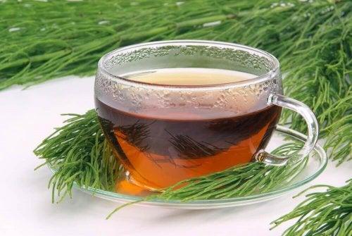 zielona herbata i chwaszczka