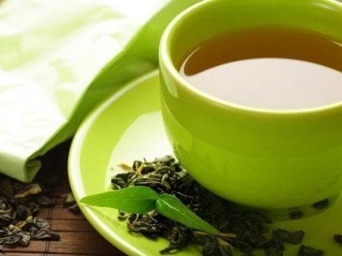 zielona herbata zielona filiżanka