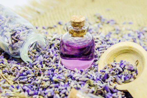 Olejek lawendowy - aromatyzacja domu