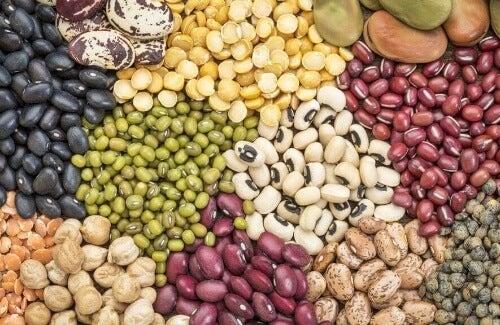 Wartości odżywcze roślin strączkowych to także bogactwo aminokwasów.