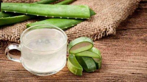 Aloes łagodzi stany zapalne i neutralizuje kwas żołądkowy.
