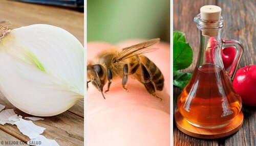 Użądlenia pszczół - 8 domowych lekarstw