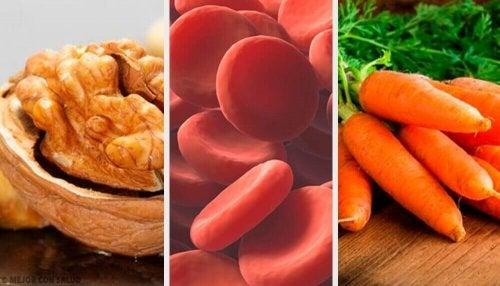Czerwone krwinki - jak zwiększyć ich liczbę?