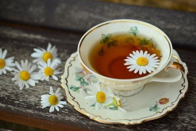 Herbata rumiankowa łagodzi obfite okresy