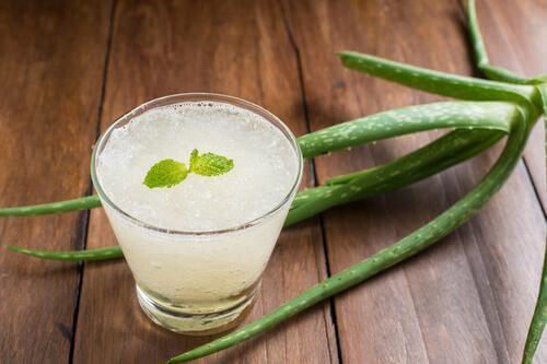 Świeży sok z aloesu