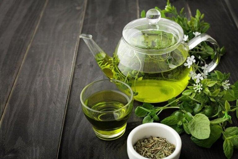 Zielona herbata.