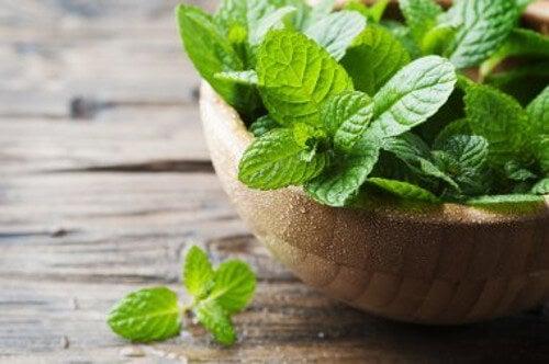 Cuchnący oddech – 3 remedia z mięty