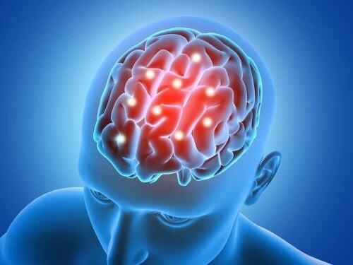 Granola na każde śniadanie gwarantuje zachowanie sprawności mózgu.