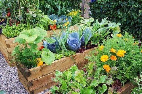 Ogrody z kwiatami - niepowtarzalne projekty