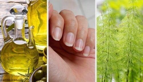 Naturalne wzmocnienie paznokci: 5 domowych metod
