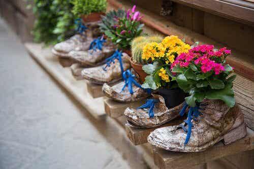 Stare buty - 6 świetnych pomysłów, jak je wykorzystać