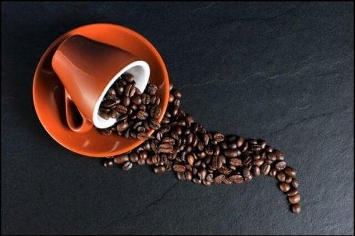 ziarna kawy w filiżance odstawienie kawy