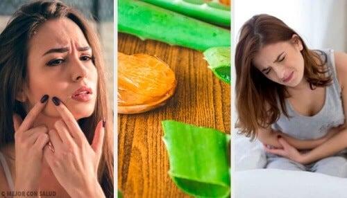 Zastosowanie aloesu dla zdrowia i urody: 6 metod