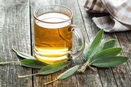 Detoksykacja nerek - remedium z bazylii i szałwi