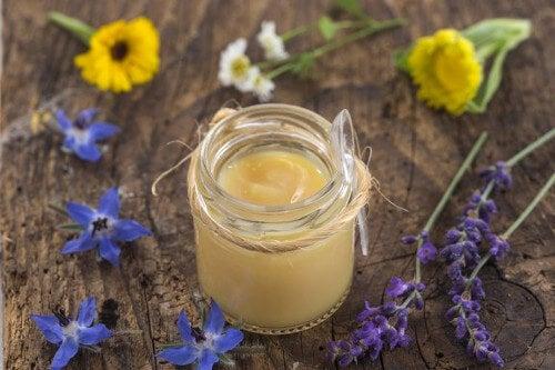 Mleczko pszczele : odkryj 6 zalet i właściwości