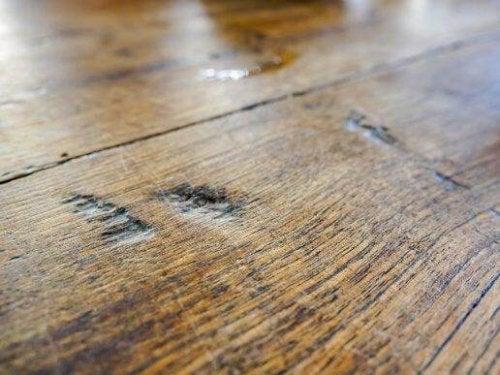 Wilgoć w domu - zbutwiała podłoga