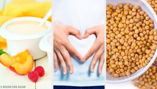 Zdrowie bakteryjnej flory jelitowej – poznaj dobre nawyki