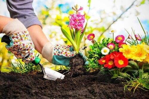 Dekorowanie małego ogródka zacznij od dokładnego rozplanowania pomysłów.