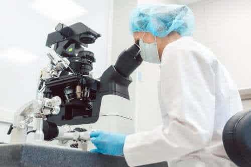 Genetyczna diagnostyka preimplantacyjna