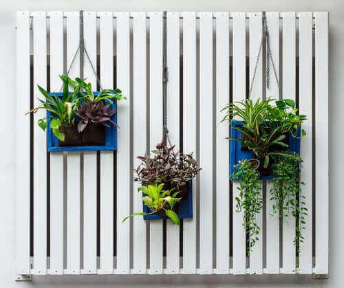 Dekoracja roślinami