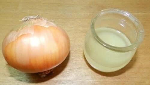 Sok z cebuli