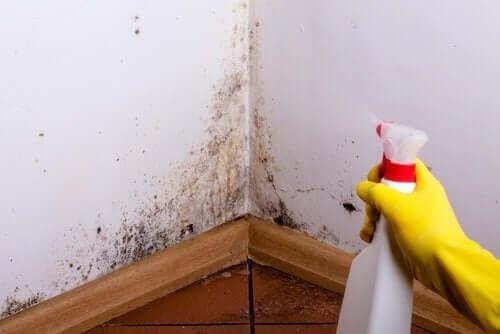 Czyszczenie poplamionych ścian: 4 proste sztuczki