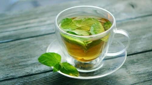 Herbata z mięty - odkryj jej zdrowotne właściwości