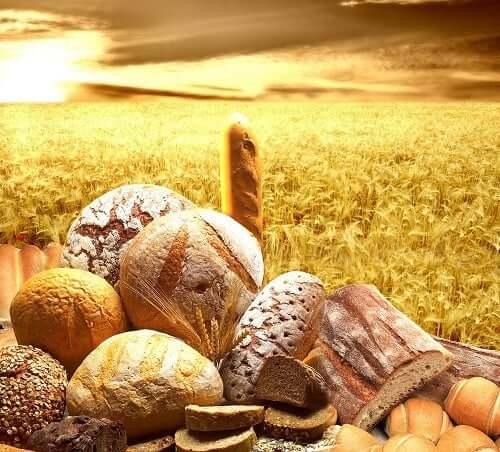Pokarmy zbożowe - co wnoszą do naszego organizmu?