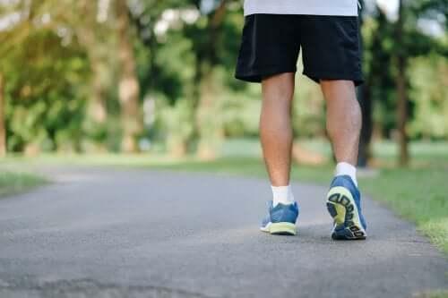 Wyjście na spacer – 8 powodów, dla których warto to regularnie robić