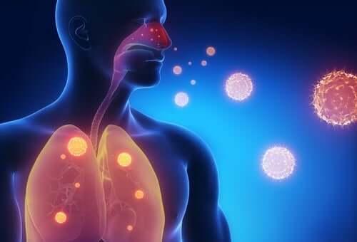 Objawy grypy – możesz je złagodzić tymi trzema naparami!