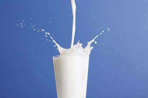 Mleko o obniżonej zawartości tłuszczu kontra pełnotłuste: które z nich jest lepsze?