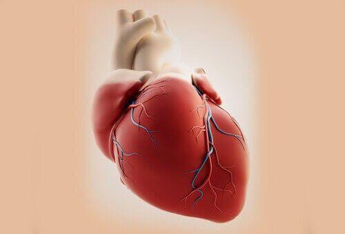 Wspólny pień tętniczy i jego podstawowe przyczyny