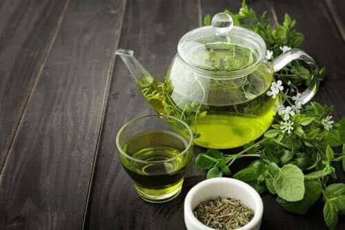 Zielona herbata na krążenie krwi