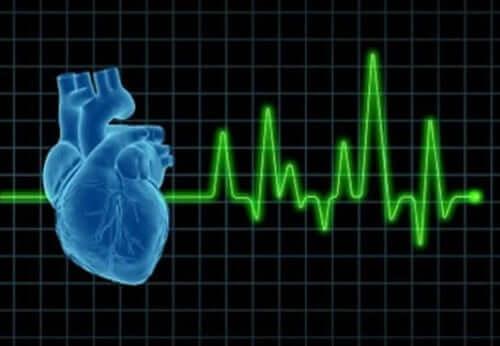 Badanie serca