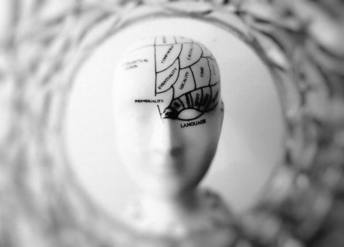 Mózg i estrogeny