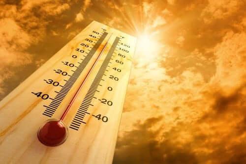 Ciepło – poznaj 6 skutków wpływu wysokich temperatur na nasz organizm