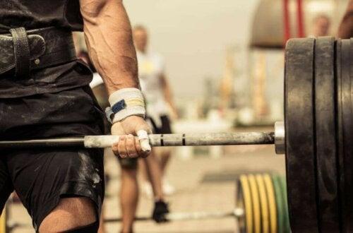 Crossfit - siłownia i ciężary
