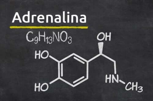 Epinefryna - wzór